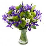 Skicka Blommor - Floristens val honom